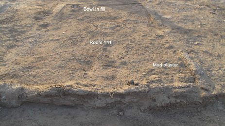 Remains of mud plaster floor (lower right) and pottery used as leveling material (upper left) in room Y11