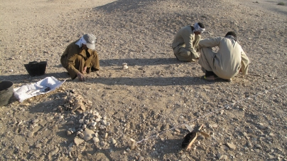 Azib and his helpers gathering stone fragments from the surface of the new square