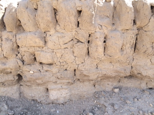 Original mud bricks set on edge to level courses in a wall.