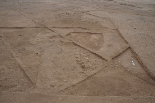 Looking south across the site. The large deposit of sherds is in the center right.