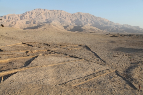 The eastern part of the site after excavation, looking north.