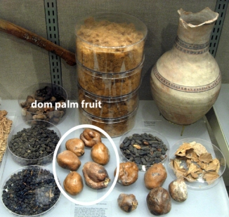 dom palm nuts-2