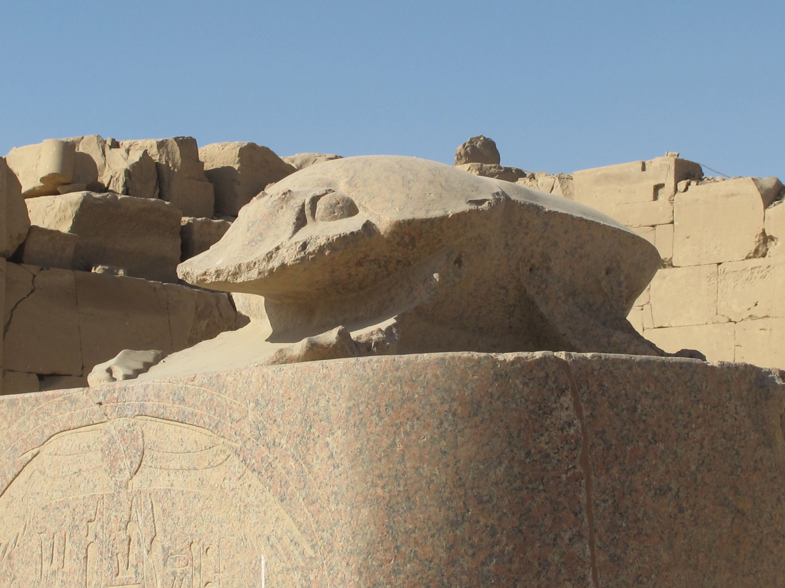 khepri-from-karnak-reduced-jpg