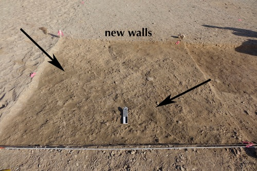 2-JEMWS_20180204_011-walls