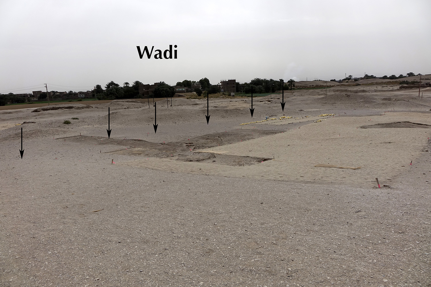 Overview of excavation site, 2018
